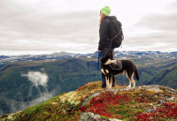 Faire de la randonnée avec un chien : partez léger !