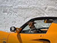 Le voyage en voiture