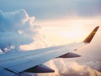 Les précautions à prendre avant de voyager en avion avec son chien