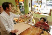 Qu'est-ce qu'un chien d'assistance pour personne handicapée ?
