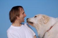 Le montage des Pyrénées : c'est un chien qui passera son temps avec vous