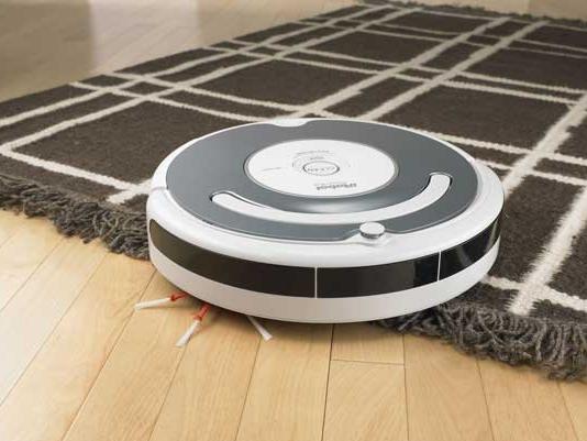 des techniques naturelles pour se d barrasser des puces dans la maison et sur votre chien. Black Bedroom Furniture Sets. Home Design Ideas