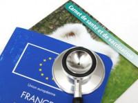 Le passeport ou carnet de santé du chien