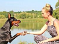 Faire du sport avec son chien : quels avantages ?