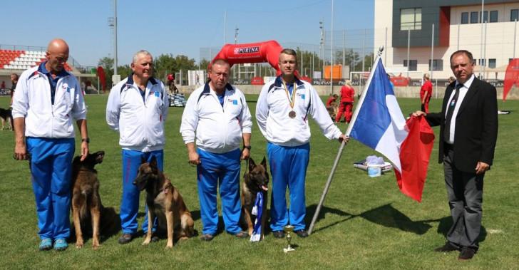 Championnat du monde des chiens de sauvetage : compte-rendu