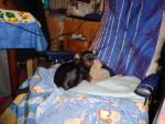 Chien Birba - Pinscher allemand Femelle (3 ans)