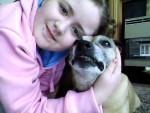 Chien tara - Staffordshire bull terrier Femelle (13 ans)