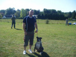 Chien american staffordshire terrier divine - American staff  (0 mois)