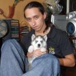Chien Teatrera Ojos Azules - Husky Femelle (3 ans)