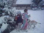 Chien wico labrador - Labrador  (0 mois)