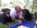 Chien Margo et Karmen avec leur maître - Rottweiler  (0 mois)