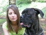Chien BOSS, mon cane corso - Cane Corso  (0 mois)
