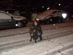 Chien El Che cane corso - Cane Corso  (0 mois)