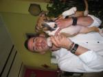 Chien bull terrier ayko - Bull terrier  (0 mois)