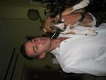 Chien bull terrier ayko - Bull terrier  ()