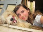 Chien Swann et moi - Lhassa Apso Femelle (1 an)