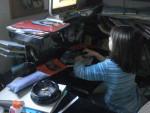 Chien petite soeur (Léane) -  Femelle (6 ans)