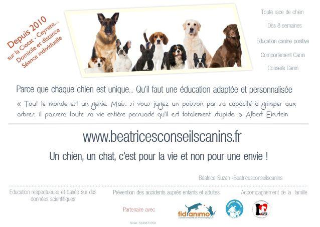Béatrice Suzan - Beatricesconseilscanins
