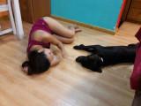 offre de service pour chiens soins-promeneur-transport-autre