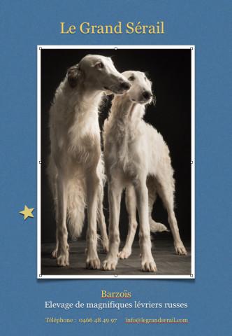 Photos d'art et posters sublimes disponibles à la vente