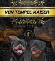 Chiots Rottweilers LOF à vendre