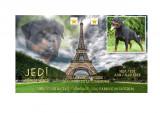 Propose étalon Rottweiler pour saillie