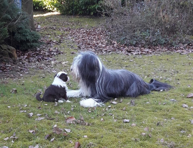 Maman Jazzy et Sepia